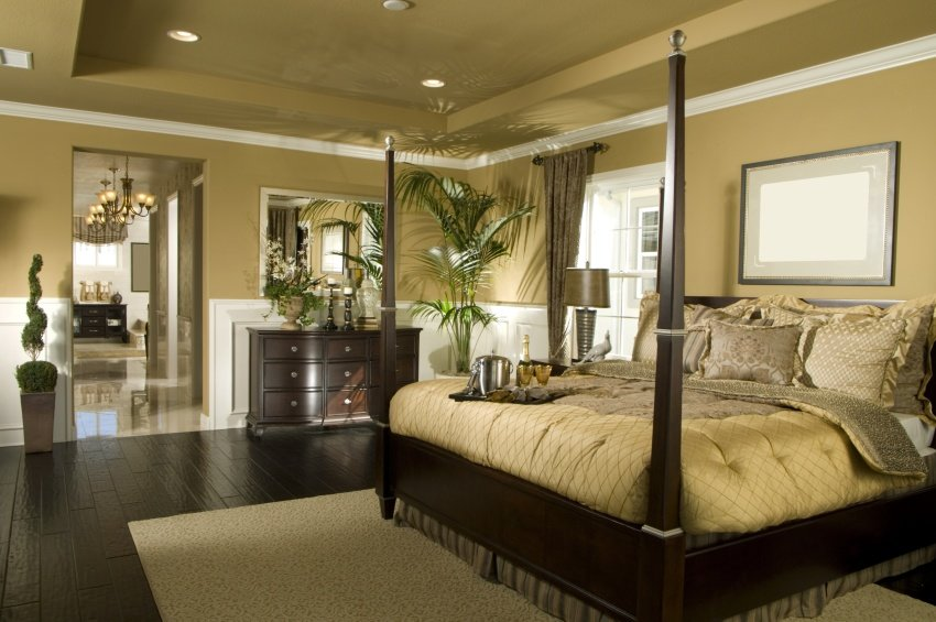 warm and beautiful bed room