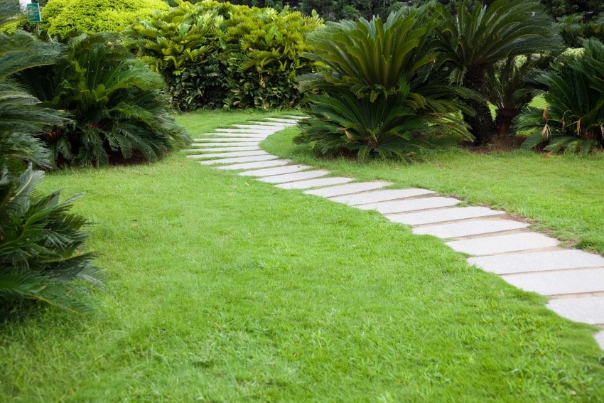 garden paved path