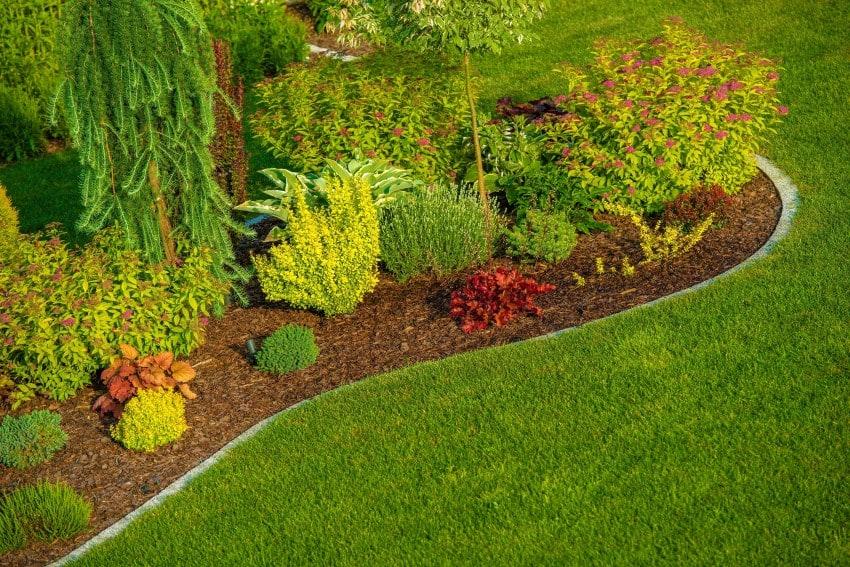 9-bigstock-Newly-Designed-Garden-95119667