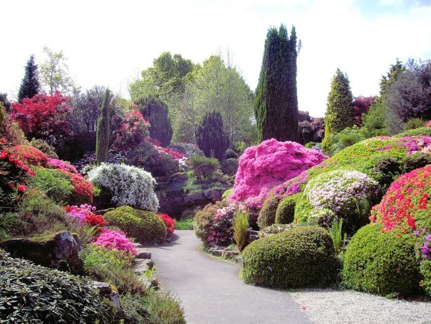 The Rock Garden10