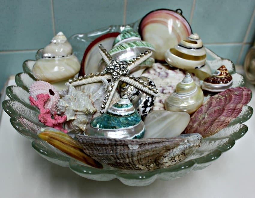 shells decor
