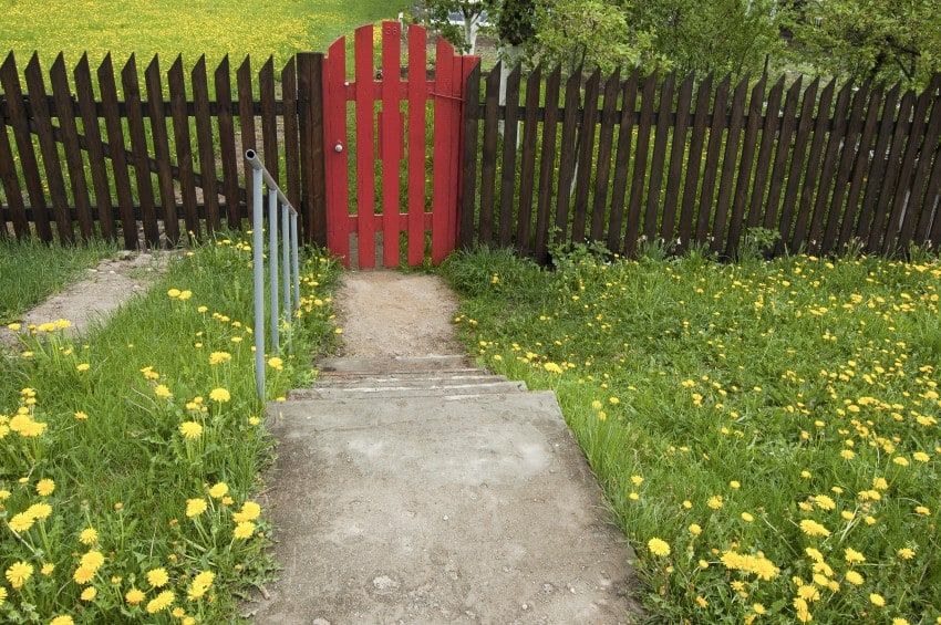 Brown wooden fence and a red gate