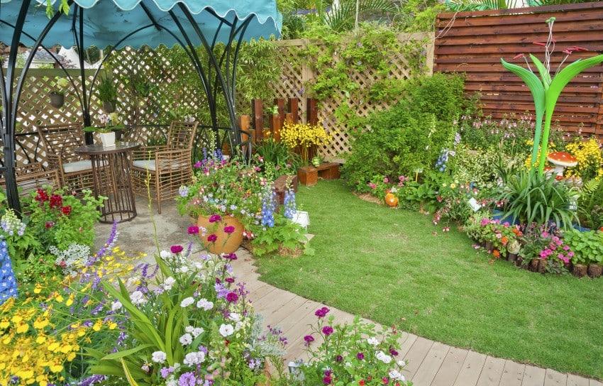 secluded backyard area