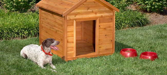 build your own dog house free plans