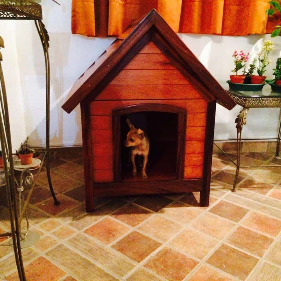 cottage style dog house