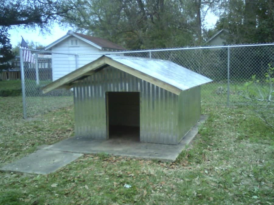 dog house for two dogs