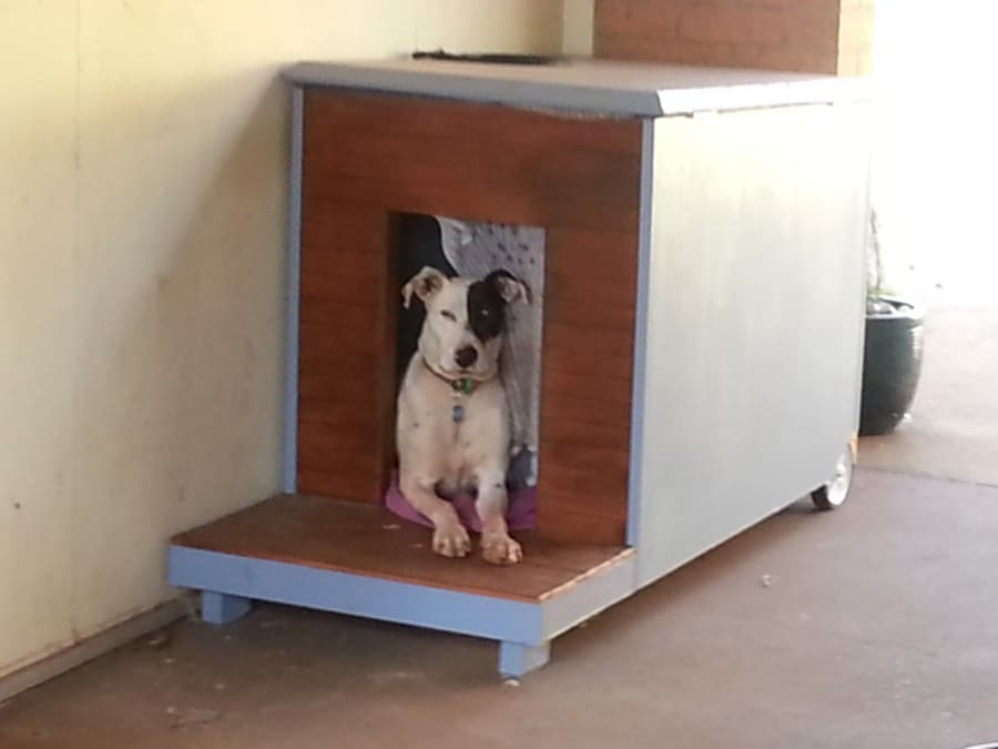 mobile-dog-house2