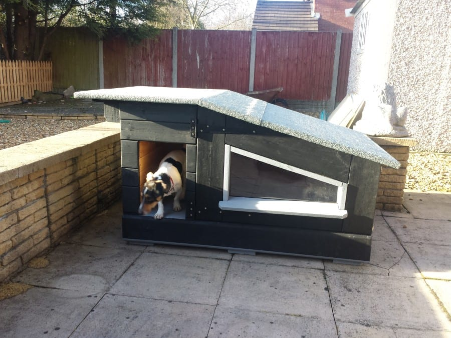 dog kennel with pallets and sun deck