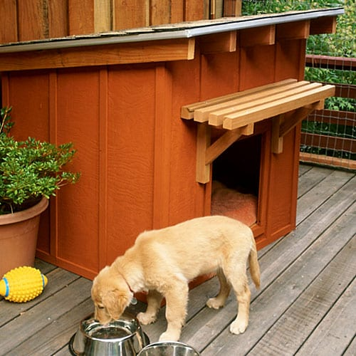 ranch style diy dog house