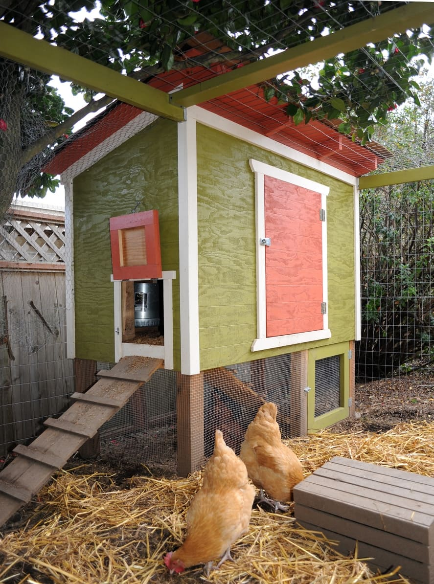 chicken-coop11-small