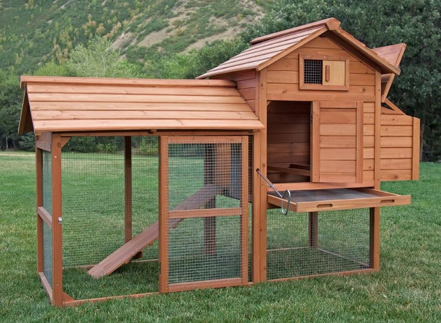 backyardchickencoops17-small