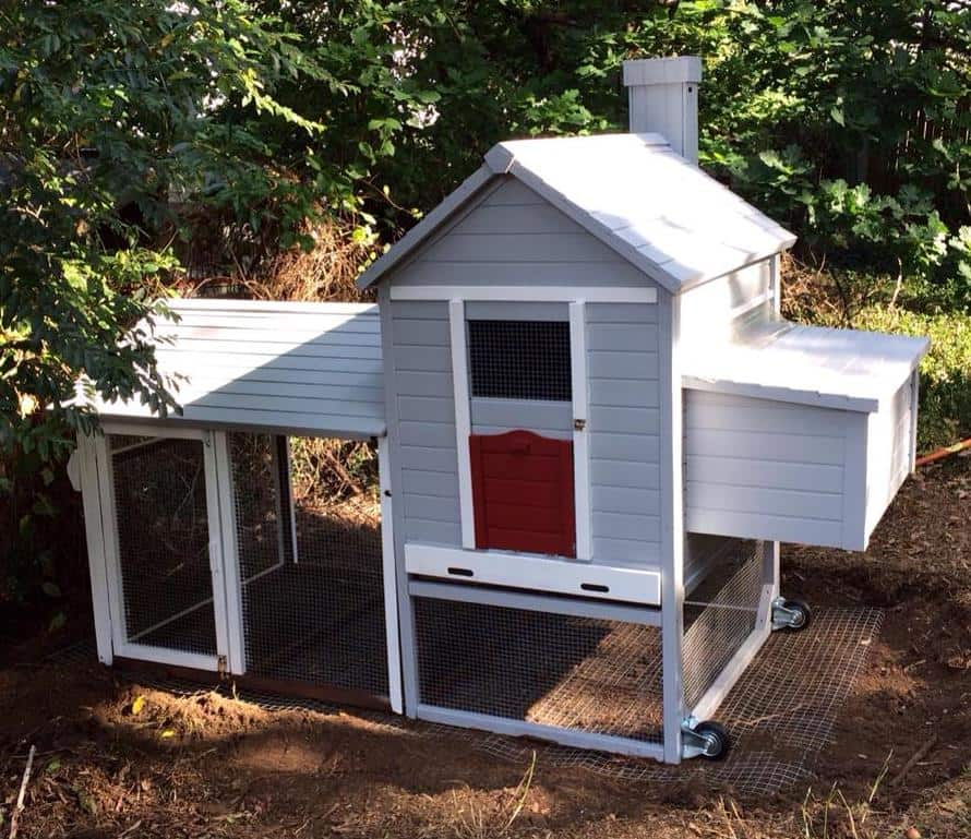 backyardchickencoops18-small