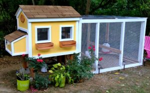 30 Awesome Custom Chicken Coop Ideas – Free DIY Plans
