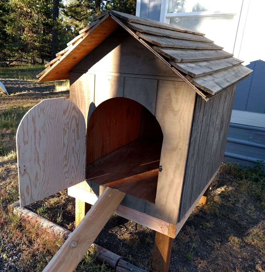 dog house transformed into a chicken house