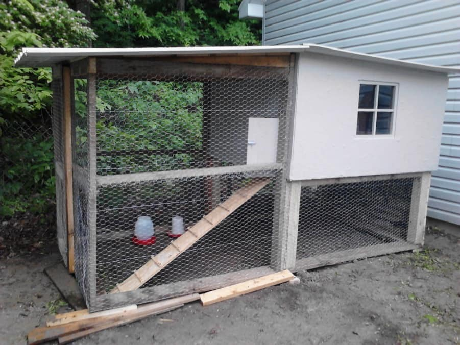 homemade-coop1-small