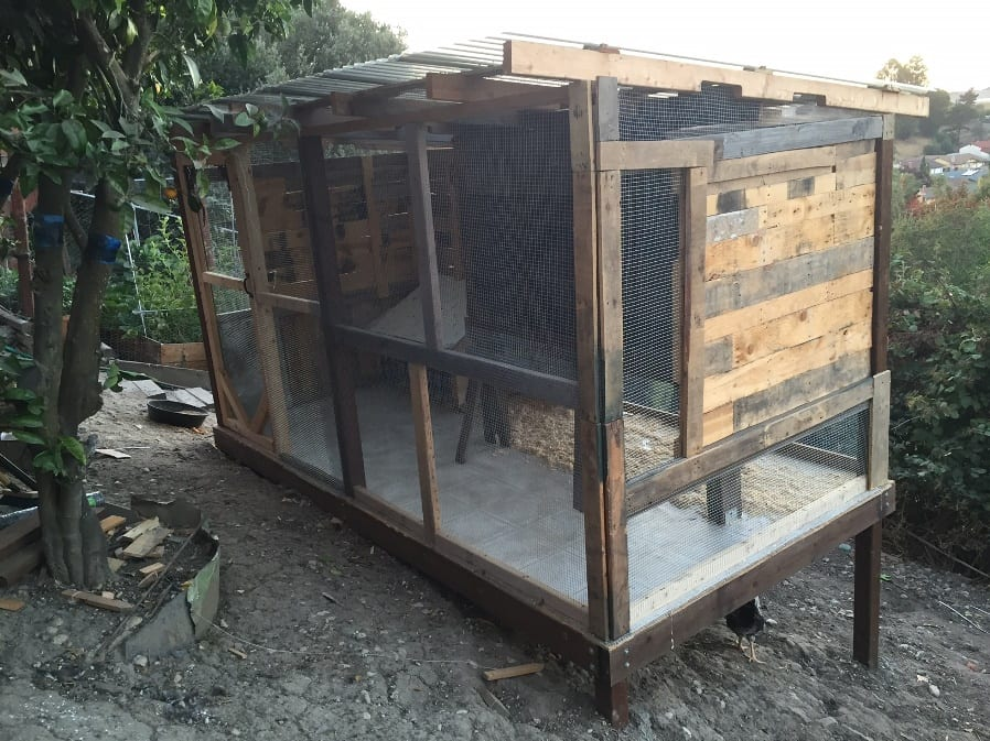 large-coop-recycled-pallets5b-small