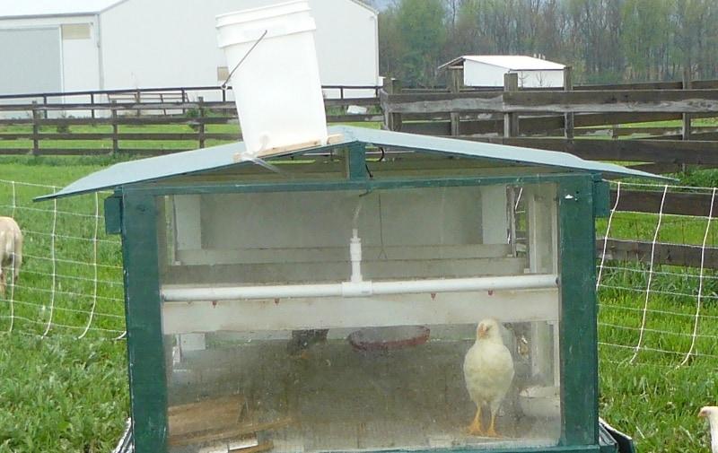 tractor-chicken-coop2
