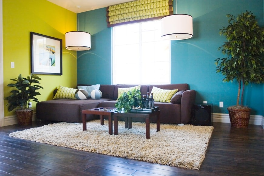 Here is a more contemporary living room design. It features a dark hardwood floor with a beige shaggy rug