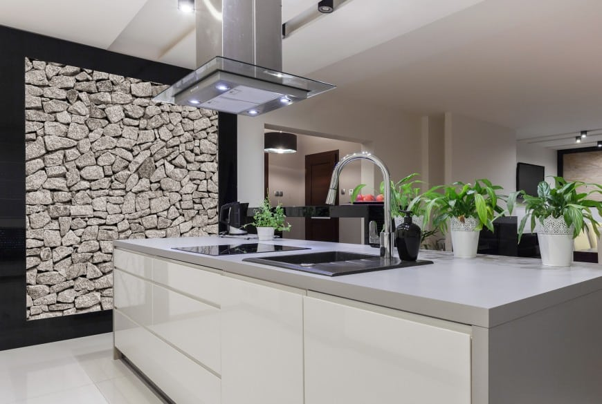 Traditional kitchen designs are OK, but what's really cool is a high-end ultra-modern design