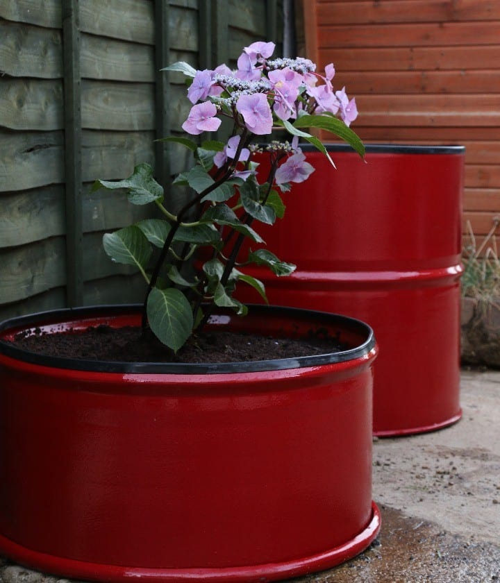 metal barrel planter red
