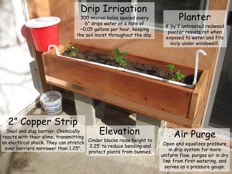 irrigated planter