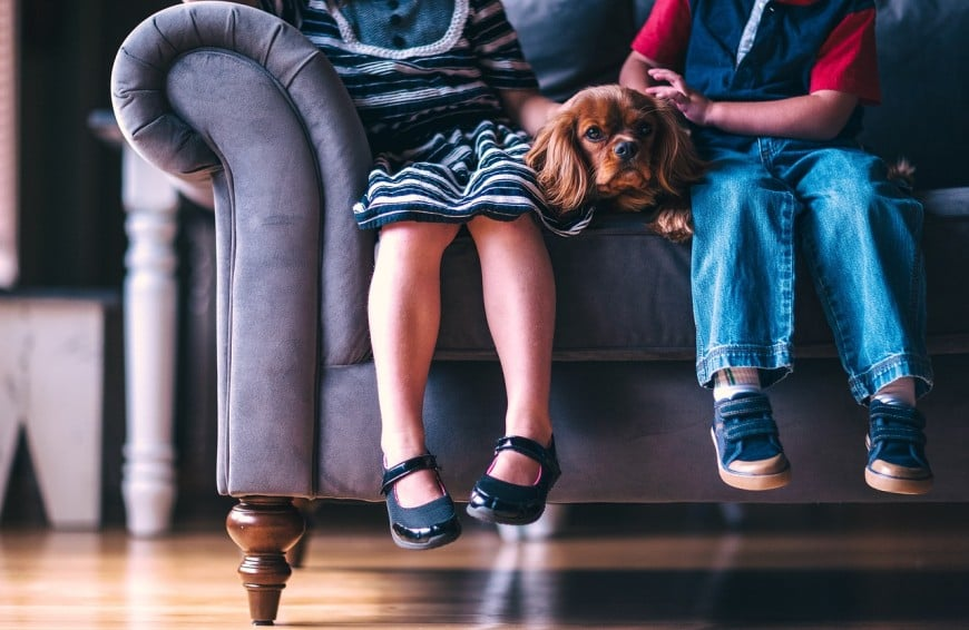 choosing a sofa furniture