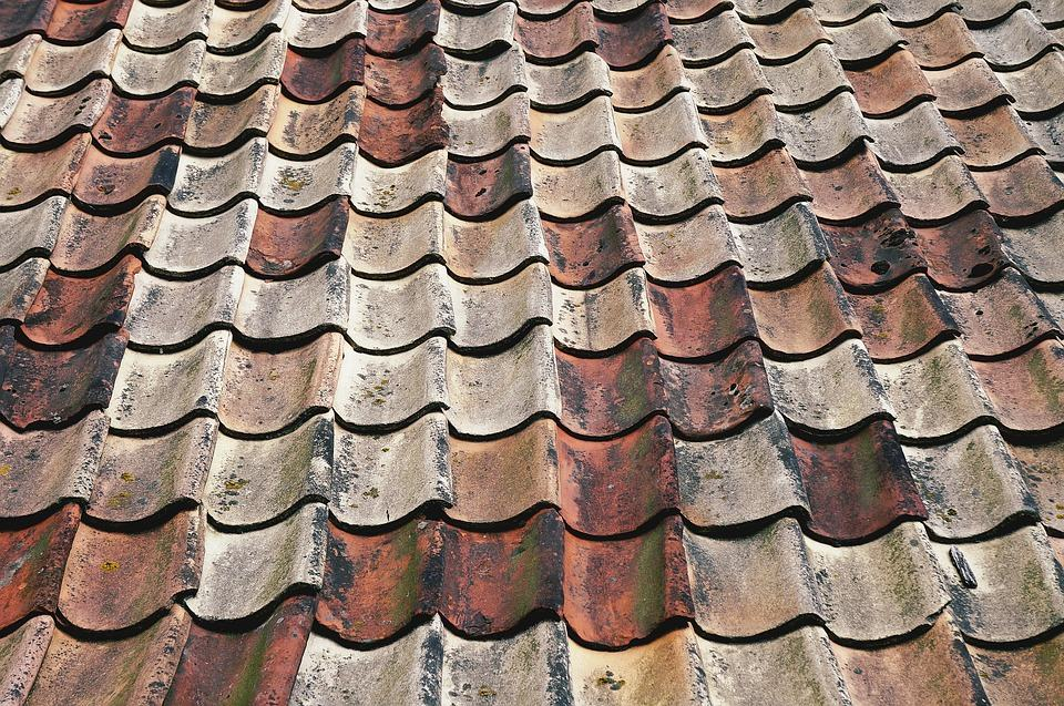 When why and how to clean your roof epic home ideas - Reasons get roof cleaned ...