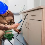 3 Reasons To Call A Pest Control Expert Immediately