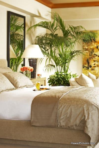 green tropical bedroom