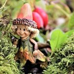 How to create your own fairy-tale in your garden?