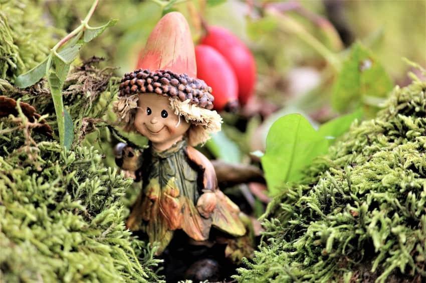 fairy tale garden