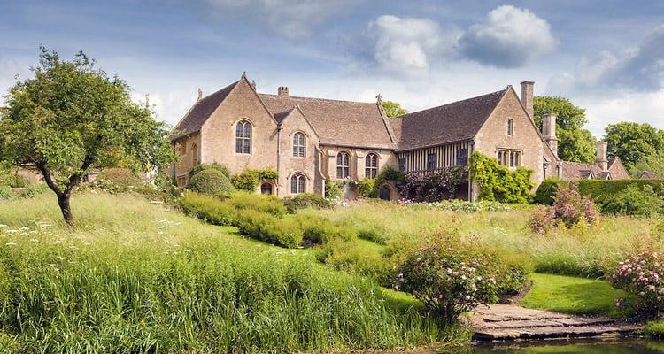 House around vegetation