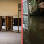Preparing for the Worst: Water Damage in your Home