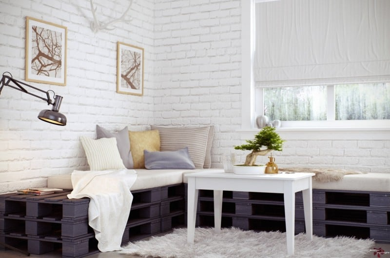 modern interior bonsai