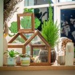 Your Ultimate Guide to Interior Decorating with Plants