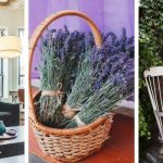 Life is stressful! How to create a soothing home oasis