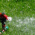 What is the Best Time of Day to Water Grass and Lawn in Summer/Winter