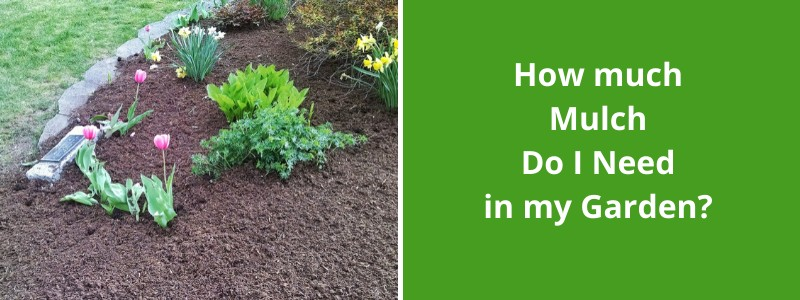 importance of mulch