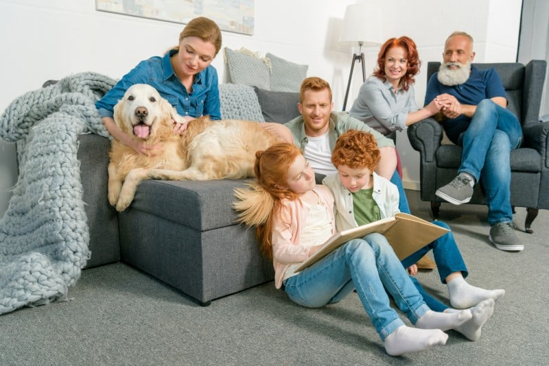 a big family at home