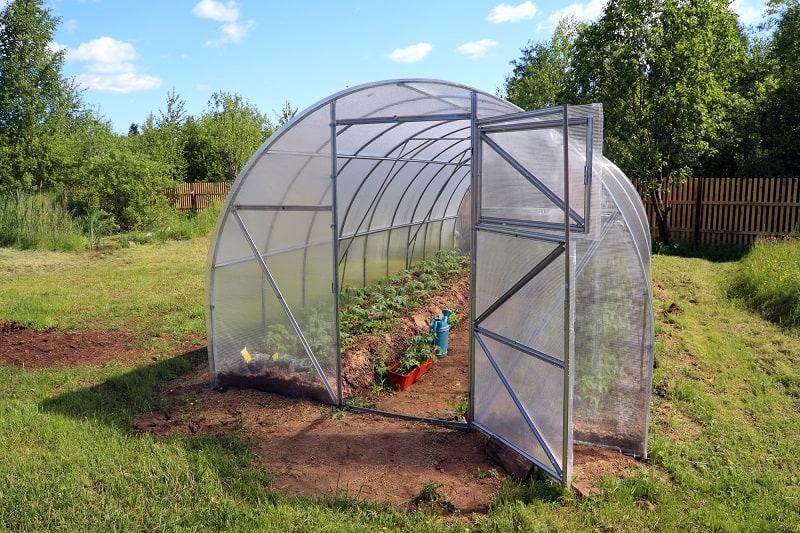 green house in backyard