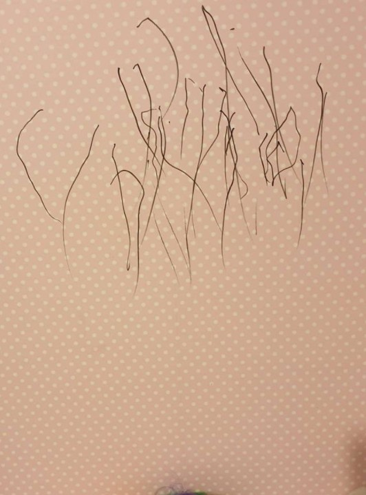 pen writing on wall