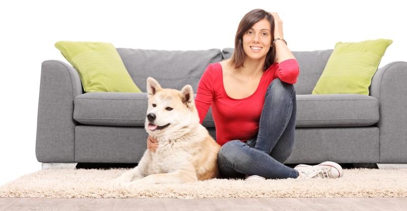 dog on carpet next to a sofa